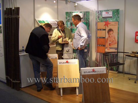 Fascinated about bamboo flooring