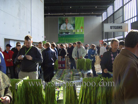 Huge crowds at Bygg Reis Deg 2007