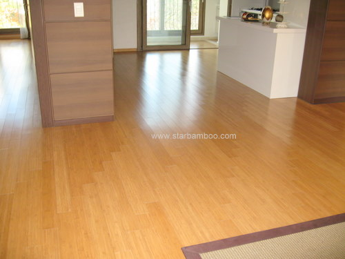 Luxury apartment with Star Bamboo flooring